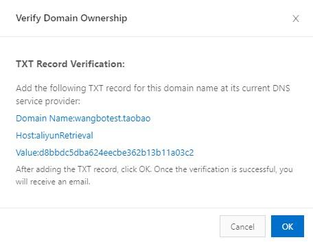 TXT Record Verification